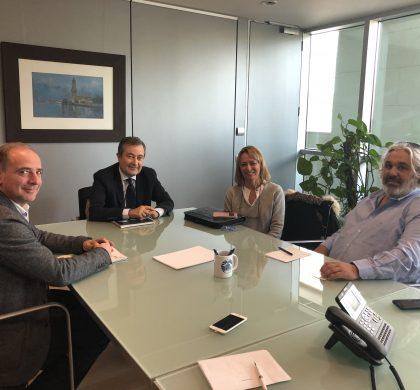 Pimeco treballarà amb Autoritat Portuària per aconseguir l'escalonament de les arribades de creuers a Palma