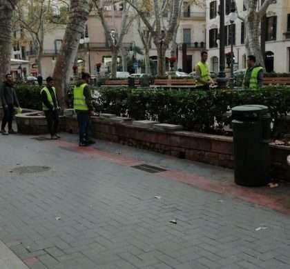 L'Ajuntament de Palma arreglael Passeig des Born